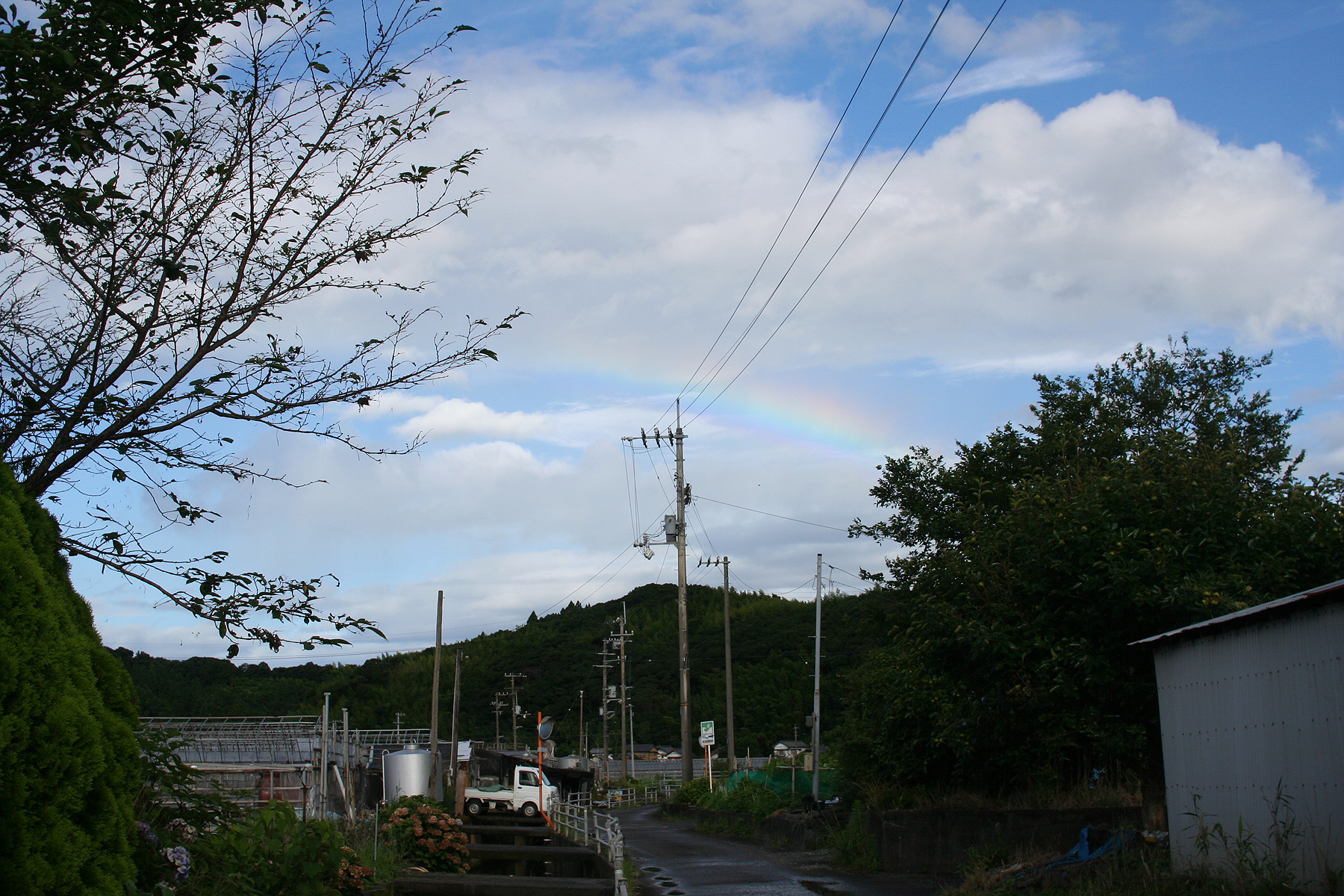 はかない虹