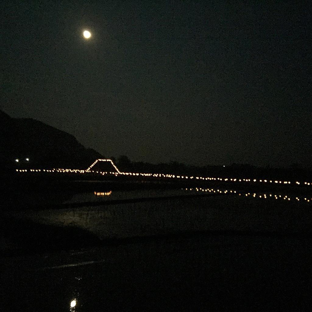 2015観音様お提灯